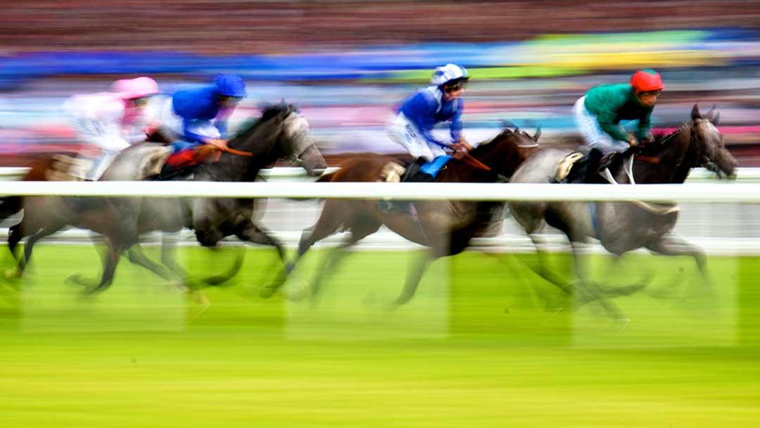 Horse Racing - Ascot Racecourse