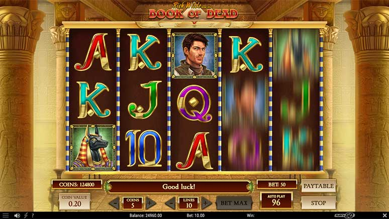 Screenshot of slot game Book of Dead from Play'n Go